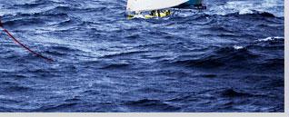 2008/2009沃尔沃环球帆船赛