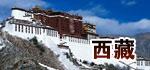 西藏代表团